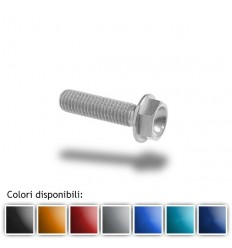 Bullone in ergal 004 testa esagonale 6x25mm